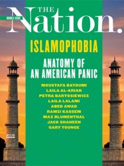 Anatomy of an American Panic